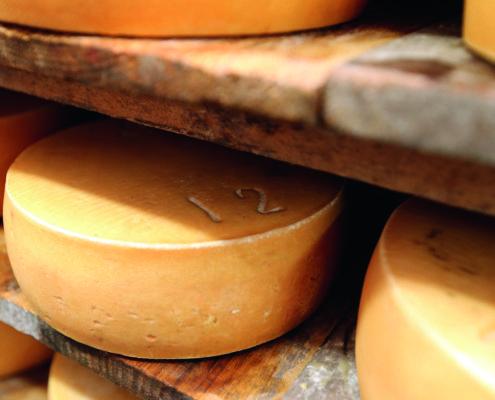 Tomme de pail à la ferme de Saint-Julien-des-Églantiers - Crédit : Pierre Minier (Ouest Médias)