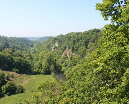 Vue du Canyon des Toyères à Saint Pierre des Nids