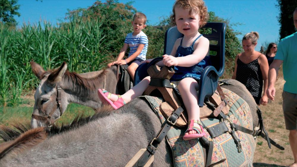 Balade à dos d'âne ou en calèche © Le Pot au Lait